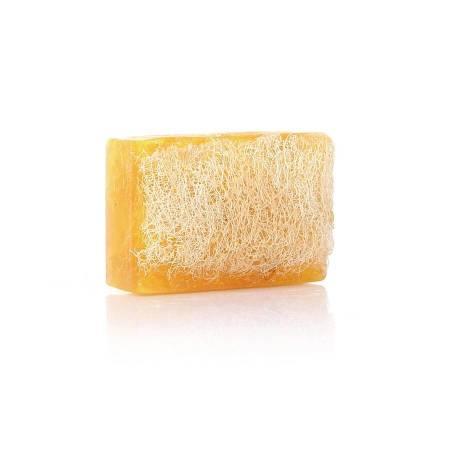 - %100 El Yapımı Doğal Kabak Lifli Limon Sabunu